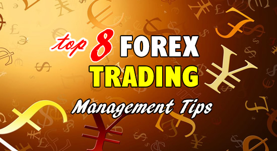 top-8-forex-trading-management-tips